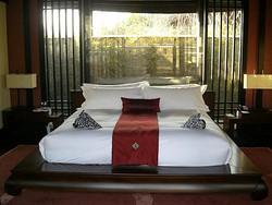床上布草-被单