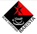SCAE2级资格考试-咖啡豆