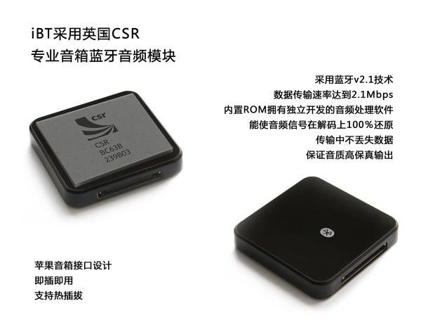iPT蓝牙数字音频转换器