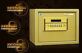 财务部 IT 保险箱保险柜系列