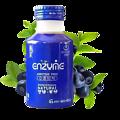 蓝莓复合发酵饮料254ml