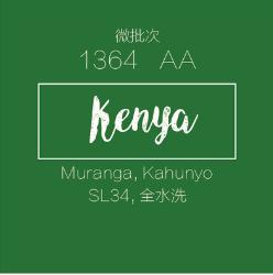 肯尼亚咖啡生豆水洗微批次1364