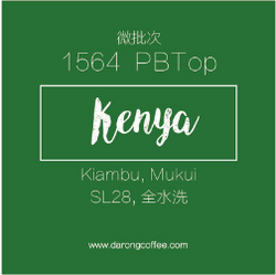 肯尼亚咖啡生豆水洗微批次1564