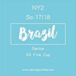 巴西进口咖啡生豆