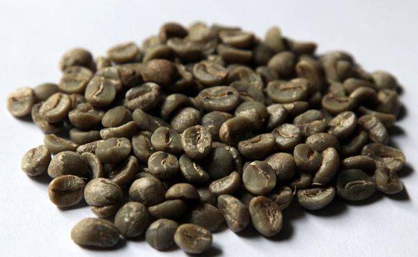 Agrimoney.com: 2016年巴西咖啡产量年增19% 创新高