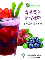 森林浆果果汁饮料浓浆