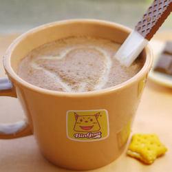 缤狗coco粉热可可粉 朱古力味粉 900克热巧克力味粉 奶茶店商用原料