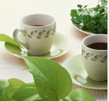 水洗罗布斯塔咖啡豆