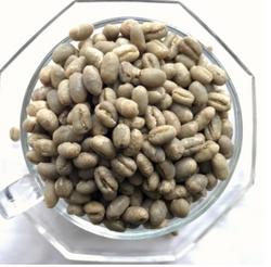 咖啡生豆巴布亚新几内亚西格里庄园天堂鸟圆豆 水洗 原产地采购