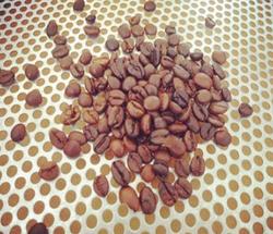 圣朵斯综合咖啡豆