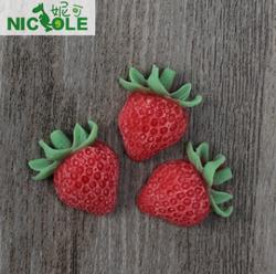 妮可F0515草莓翻糖硅胶模具蛋糕装饰模具 烘焙工具巧克力模具皂模