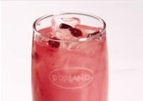 活力蔓越莓饮料