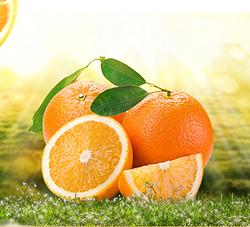 椰果&果酱-香橙果酱