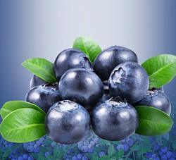 椰果&果酱-蓝莓果酱