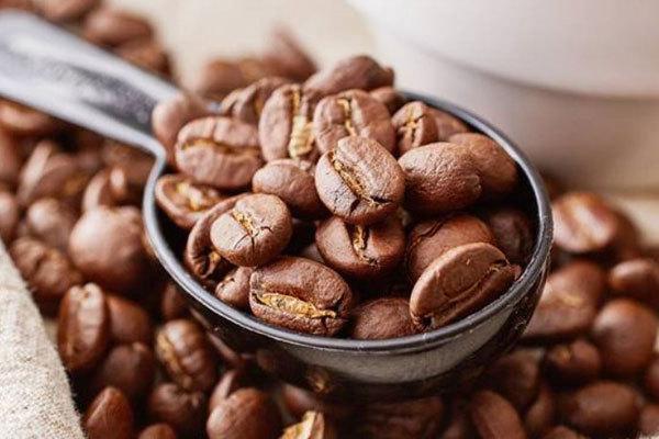 浅析咖啡豆品牌排行榜的作用