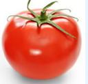 天然番茄红素