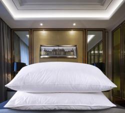 草枕芯优质超舒适防羽布羽丝绒枕头