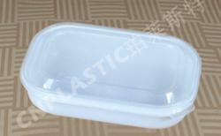 塑料盒 H01