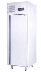 单大门风冷冷冻立式柜