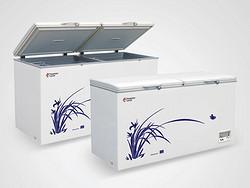 冷冻冷藏双温转换系列 BD/BC-312H