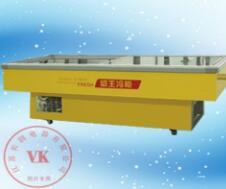 威王 海鲜柜 HXG-2306