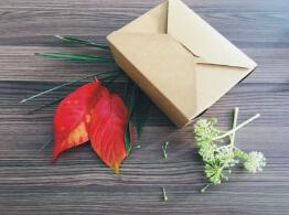 鑫麦佳烘焙纸盒  牛皮饭盒