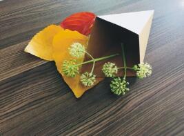 鑫麦佳烘焙纸盒  薯条盒