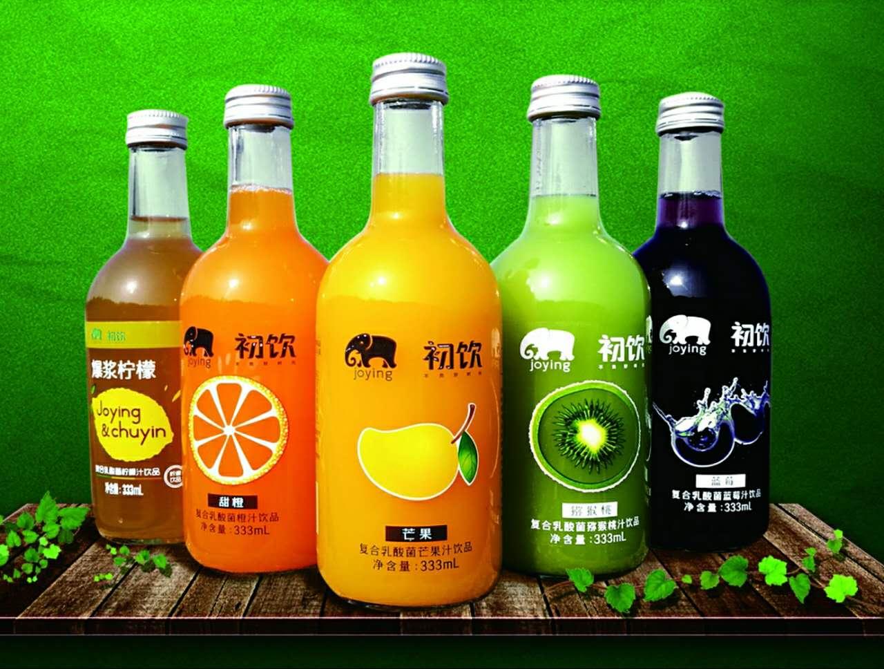 初饮复合乳酸菌果汁饮品
