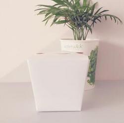 方底餐盒环保
