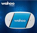 Wahoo TICKR 心率监测带