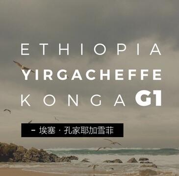 埃塞·孔家耶加雪菲 日晒处理 咖啡豆 Konga 150g