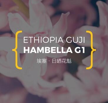 浅烘酸甜感 埃塞·日晒花魁 Hambella G1 150g 咖啡豆