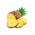 冷冻菠萝果块