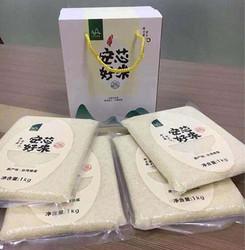 台湾直供安心大米