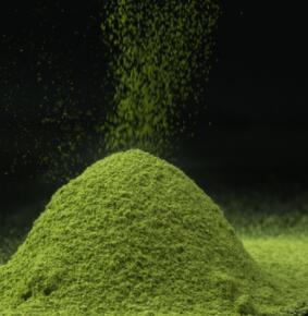 有机鲜叶抹茶粉