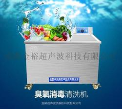 全自动臭氧消毒机清洗机