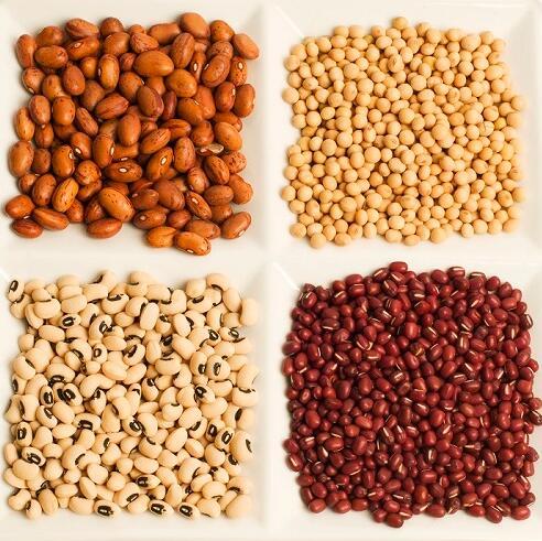 大豆、小麦、玉米和淀粉、杂粮