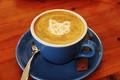 周杰伦最新MV大火  如何做好奶茶店服务细节却在其中