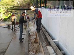 尼加拉瓜高海拔精品咖啡生豆-全水洗處理