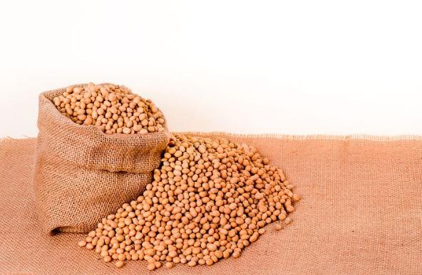 龙禹速溶豆浆粉的市场价格怎么样