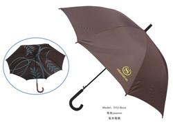 酒店客房 喜来登雨伞