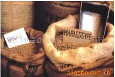 夏威夷圆豆 咖啡生豆 烘焙豆