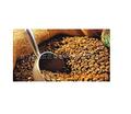巴西山度士 Brazil 烘焙豆