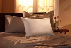 标床枕芯-白鹅绒